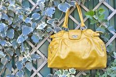 Bolso de lujo de la manera Foto de archivo libre de regalías