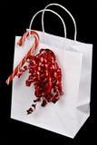 Bolso del día de fiesta Imagen de archivo libre de regalías