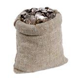 Bolso del dinero Imagen de archivo libre de regalías