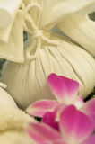 Bolso del masaje Foto de archivo libre de regalías