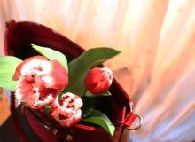 Bolso del ` s de los tulipanes y de las mujeres Fotos de archivo