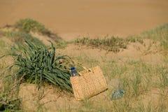 Dunas soleadas Foto de archivo libre de regalías