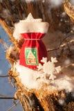 Bolso festivo de la Navidad con la galleta del pan de jengibre Fotografía de archivo