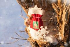 Bolso festivo de la Navidad con la galleta del pan de jengibre Fotos de archivo