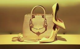Bolso y zapatos de cuero elegantes Imagenes de archivo