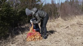 Bolsos abiertos de las patatas de la madre y de la hija en hierba almacen de video