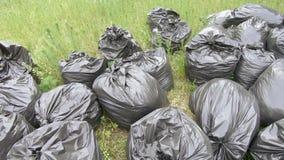 Bolsos de basura en el c?sped almacen de metraje de vídeo