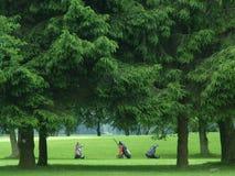 Bolsos de golf en el espacio abierto Fotografía de archivo libre de regalías