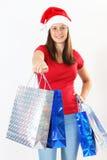 Bolsos de la mujer y de la Navidad Imágenes de archivo libres de regalías