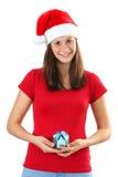 Bolsos de la mujer y de la Navidad Fotos de archivo libres de regalías