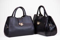 bolsos de las mujeres de moda del lether Imagen de archivo libre de regalías