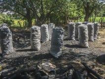 Bolsos del carbón de leña en la granja Fotos de archivo
