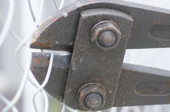 Bolt cropper cutting fence close up Stock Photography