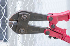Bolt cutter cropping fence close up Royalty Free Stock Photography
