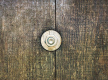Bolt nut on wooden Royalty Free Stock Image