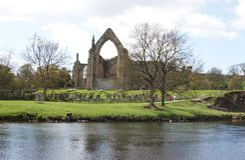 Bolton Abbey. A landscape of Bolton Abbey royalty free stock photo