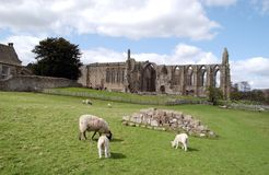 Bolton Abbey. A landscape of Bolton Abbey royalty free stock photos