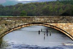 Bolton Bridge. Anglers under the Bolton Bridge Royalty Free Stock Photos
