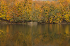 Bolu, Yedigöller Siedem jezior park narodowy - Obrazy Royalty Free