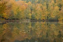 Bolu - Yedigöller sju sjönationalpark Fotografering för Bildbyråer
