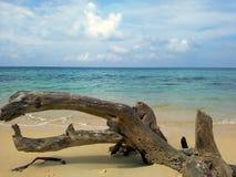 Bolus i morze - playa blanca, Cartagena obrazy stock