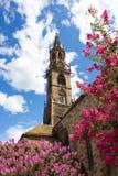 Bolzano大教堂  库存照片