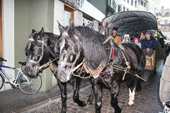 Bolzano carriage Stock Image