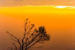 Bom dia, luz bonita do nascer do sol Foto de Stock