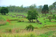 Bomb craters from the Vietnam War surround giant megalithic stone urns at the Plain of Jars archaeological site in Loas. This area is the world`s most heavily Royalty Free Stock Photos