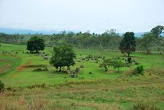 Bomb craters from the Vietnam War surround giant megalithic stone urns at the Plain of Jars archaeological site in Loas. This area is the world`s most heavily Royalty Free Stock Image