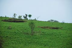 Bomb craters from the Vietnam War surround giant megalithic stone urns at the Plain of Jars archaeological site in Loas. This area is the world`s most heavily Royalty Free Stock Photography