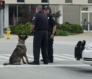 Bomb Dog. 2013 Peoria IL Marathon Police and dog in attendance stock photography