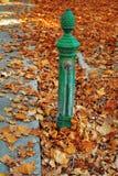 Bomba de água da rua Imagem de Stock