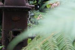 Bomba de agua vieja en el fondo con las hojas unfocoused en frente Imagen de archivo libre de regalías