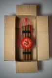 Bomba de relojería en rectángulo Imagen de archivo