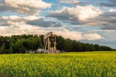 Bomba Gato del pozo de petróleo foto de archivo libre de regalías