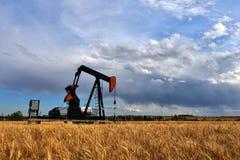 Bomba Jack do campo petrolífero Foto de Stock Royalty Free