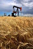 Bomba Jack do campo petrolífero Imagem de Stock Royalty Free