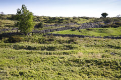 Bombardi i campi perforati sulle colline di Mendips a Somerset Fotografia Stock