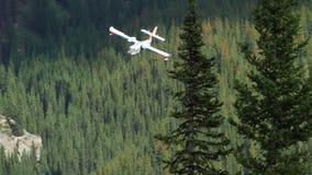 Bombardier de l'eau du feu de forêt banque de vidéos