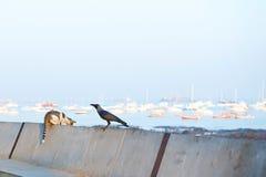 Bombay Imagen de archivo libre de regalías