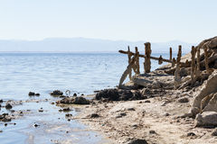 Bombay Beach, California. The remains and standing frames in the once popular town Bombay Beach in the Salton Sea, California Royalty Free Stock Photography