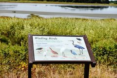 Bombay hook  wildlife refuge  delaware state usa. One of the landmark of Delaware state in USA is Bombay hook national park , thousands of birds  during year Royalty Free Stock Photos