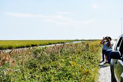 Bombay hook  wildlife refuge  delaware state usa. One of the landmark of Delaware state in USA is Bombay hook national park , thousands of birds  during year Stock Images