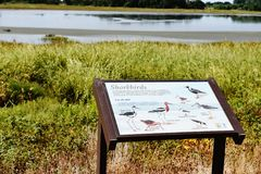 Bombay hook  wildlife refuge  delaware state usa. One of the landmark of Delaware state in USA is Bombay hook national park , thousands of birds  during year Stock Photos