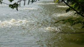 Bombee el control de calidad del uso del equipo del tratamiento del oxígeno y de aguas residuales en el lago cercano, las aguas r almacen de video