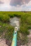 Bombeie a água do canal às almofadas de arroz Imagem de Stock