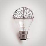 Bombilla con el cerebro dibujado mano como idea creativa Fotos de archivo libres de regalías