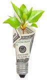 Bombilla con el dólar y el brote verde Foto de archivo