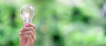 Bombilla con el fondo verde Nuevos conceptos de la idea, creativos, del genio, de la innovación y de la energía solar foto de archivo